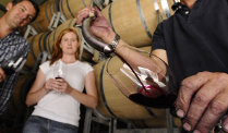 Best of the Best Wine tour