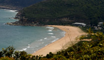 Coastal Bush Walks