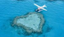 qualia_Great-Barrier-Reef_Heart-Reef_263x154