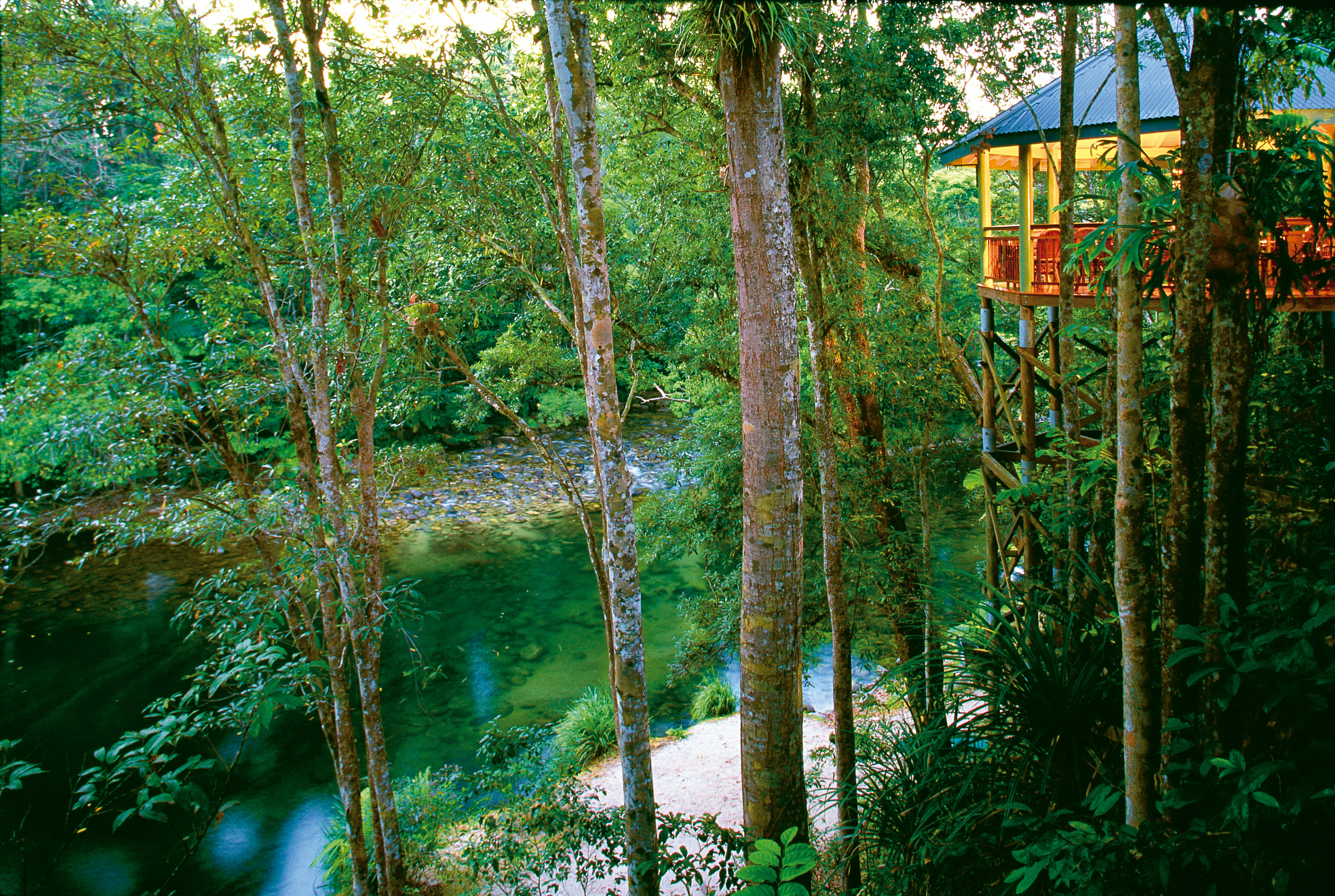 Silky Oaks Lodge - The Daintree - The Jungle Perch from Treehouse Restaurant - Click to view larger version