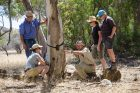 Arkaba_Flinders-Ranges_Conservation-Group - Click to view larger version