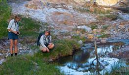 Arkaba Creek