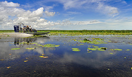 Bamurru Plains Airboat