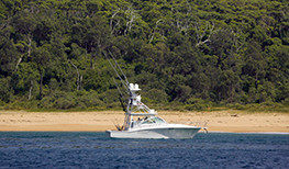 Pretty Beach House Boat