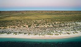 Sal Salis Reef Tents
