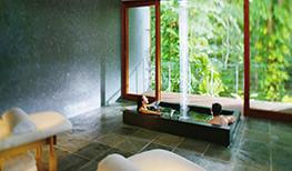 Silky Oaks Lodge Healing Waters Spa