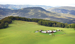 What a Year for Spicers Peak Lodge