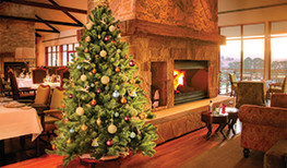Celebrate Christmas In The Mountains