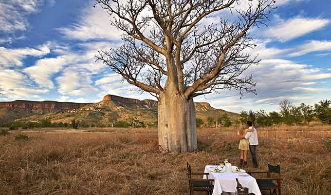 El-Questro-Homestead_The-Kimberley_Boab-Tree-Dining680x400