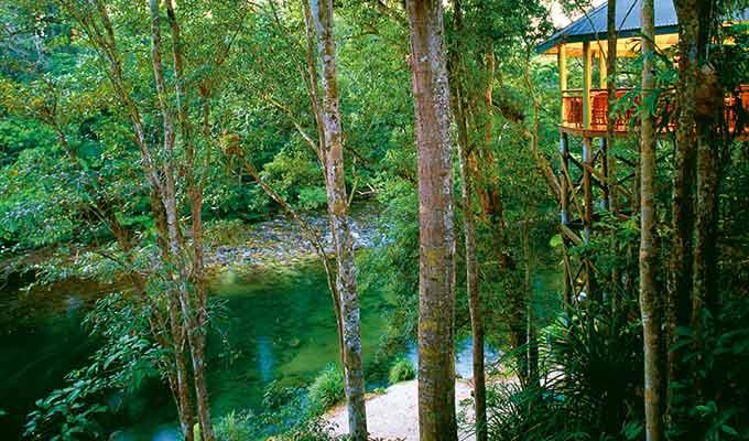 Silky-Oaks-Lodge_The-Daintree_Jungle-Perch680x400