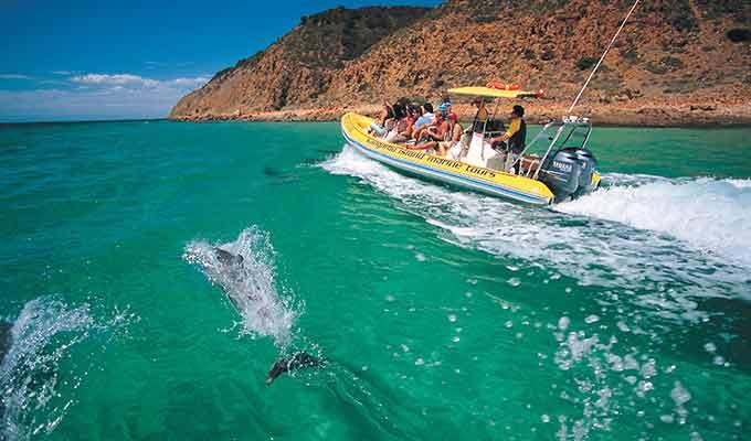 Southern-Ocean-Lodge_Kangaroo-Island_KI-Dolphin-Adventure680x400