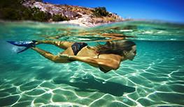 Turtle Dreaming Lizard Island