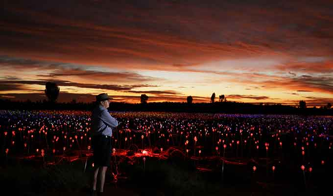 Field of Light Continues to Bloom