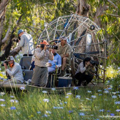 Top End Photo Safari at Bamurru Plains