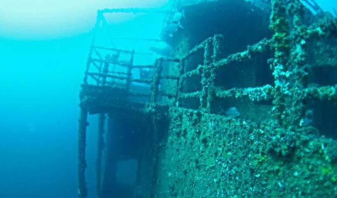 Shipwreck Diving Off Avoca Beach