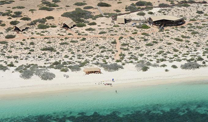 Dune Swoon