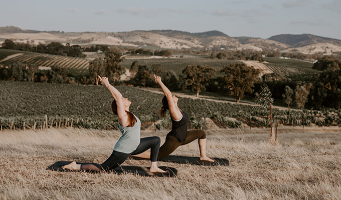 Wellness In The Vines