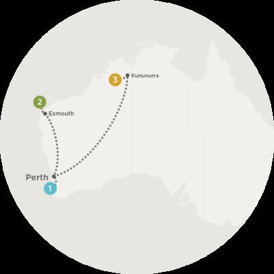 Safari In Western Australia