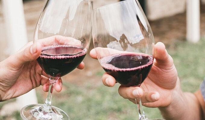 Cape Lodge Fine Vines